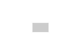 Màn Chiếu 3 Chân Dalite-Apollo-Telon (Chân Inox vuông)